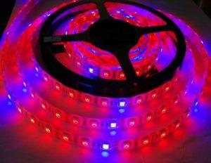LED-фитолента для растений